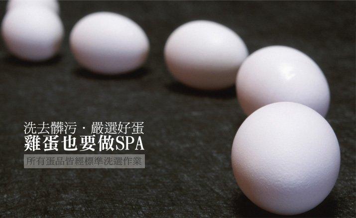 雞蛋常識-冷藏洗選蛋 食用前再洗